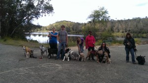 Me and my ADA Pals!